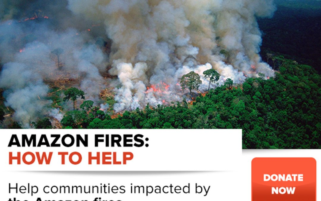 Can we do something to help with the Amazon's fires?